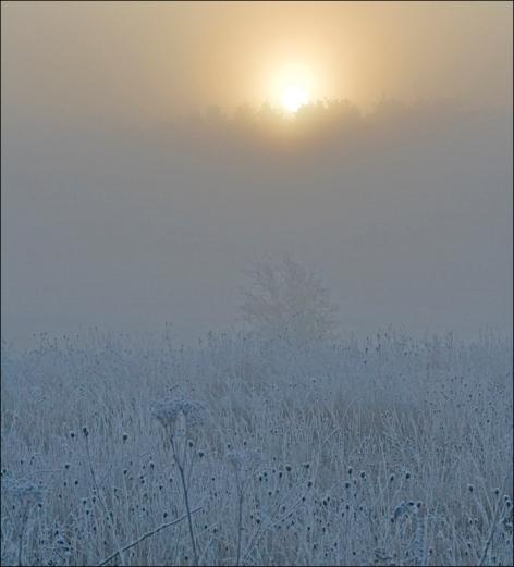 dawn light2