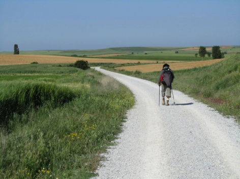 SM: Pilgrim on the Camino