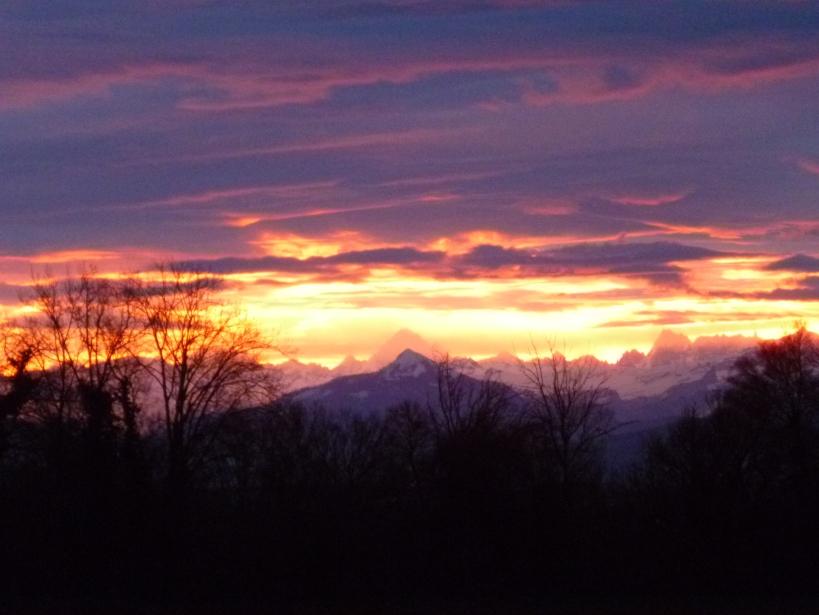 dawn Jan 1