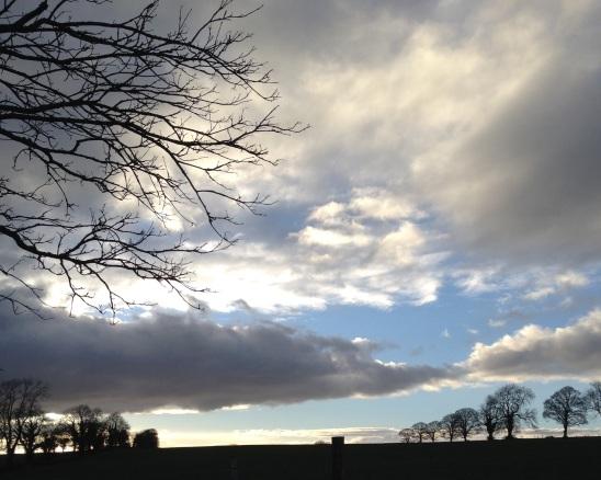 cloudy-bolton